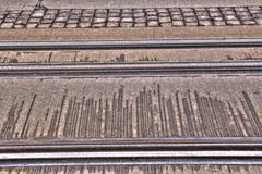 Tram Rails Stock Image