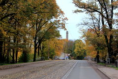 Tram rails on road. Empty autumn road with tram rails and yellow/orange trees in near old town in Riga, Latvia stock images