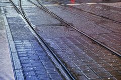Tram rails. On the asphalt royalty free stock photo
