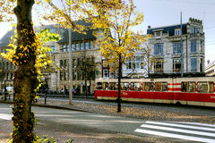 Tram at stop in The Hague, Netherlands Royalty Free Stock Photos