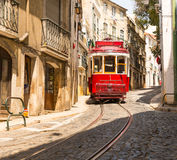 Tram on the street Royalty Free Stock Image
