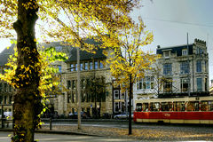 Tram on streets of The Hague, Netherlands Royalty Free Stock Photo