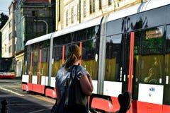 Tram tchèque de Prague photos stock