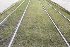 Tram tracks in the grass Royalty Free Stock Photography