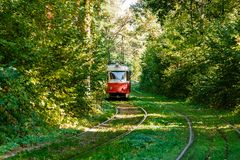 Tram and tram rails in colorful forest. Close up Royalty Free Stock Photos