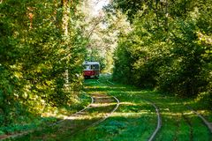 Tram and tram rails in colorful forest. Close up Stock Photography