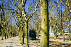 A tram between the trees in a park of Bordeaux Royalty Free Stock Images