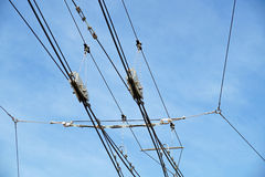 Tram wires. With blue sky background royalty free stock image