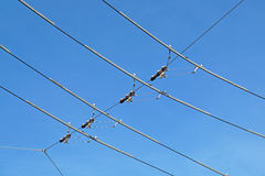 Tram wires. With blue sky background stock photography