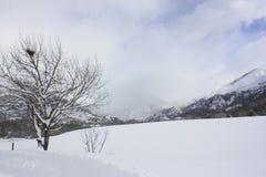 Tramacastilla de Tena, montañas nevadas, los Pirineos Imagenes de archivo