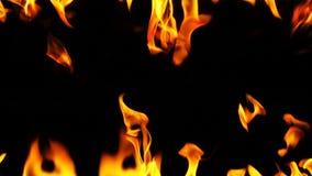 Trame brûlante d'incendie banque de vidéos