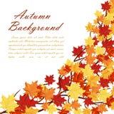 Trame d'automne illustration stock