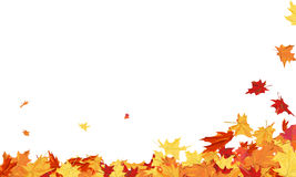 Trame d'automne Images stock