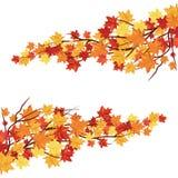 Trame d'automne illustration libre de droits
