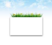 Trame d'herbe Photos libres de droits