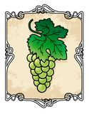 Trame de brunch de raisin Photo libre de droits