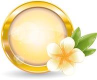 Trame de cercle d'or avec la fleur blanche de frangipani Photographie stock
