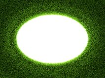 Trame de cercle d'herbe Photos libres de droits
