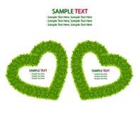 Trame de coeur d'amour d'herbe verte d'isolement Photographie stock libre de droits