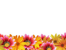Trame de fleur