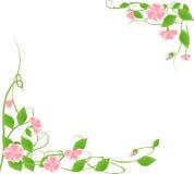 Trame de fleur Image libre de droits
