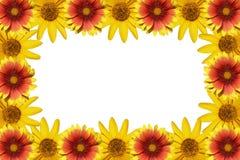 Trame de fleurs Photo libre de droits