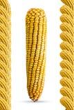 Trame de maïs Photo stock