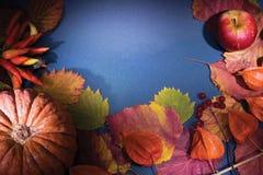 Trame de moisson d'automne Images libres de droits