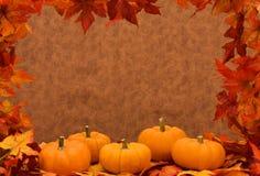 Trame de moisson d'automne Image stock