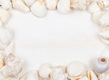 Trame de Seashell Photo stock