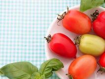 Trame de tomates Photos libres de droits