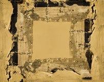 Trame de treillis métallique de plâtre Photos libres de droits