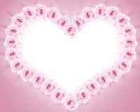 Trame des roses Photos libres de droits