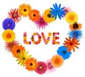 Trame du coeur de Valentine Photos stock