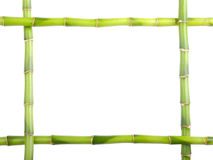 trame en bambou Image libre de droits