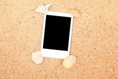 Trame et seashell blanc de photo Photos stock