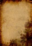Trame fleurie pour la salutation Photographie stock libre de droits