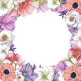 Trame florale Images libres de droits