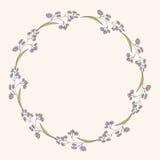 Trame florale illustration stock