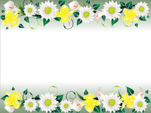 Trame florale Image stock