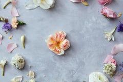 Trame florale avec des fleurs Photos libres de droits