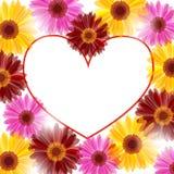 Trame florale de coeur Photo stock