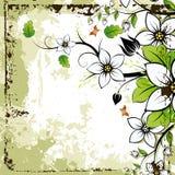 Trame florale grunge Photos libres de droits