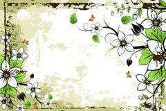 Trame florale grunge Image libre de droits