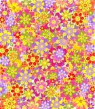 Trame gentille assez florale. Photos libres de droits