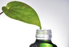 Trame horizontale de medicinein de fines herbes images libres de droits