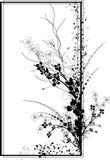 Trame noire et blanche rectangulaire Photo stock