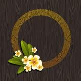 Trame ronde abstraite et fleurs tropicales Photographie stock libre de droits