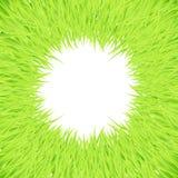 Trame ronde d'herbe Photo libre de droits