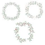 Trame ronde de fleur Photos stock
